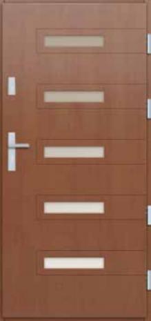 Drzwi Zewnętrzne P09