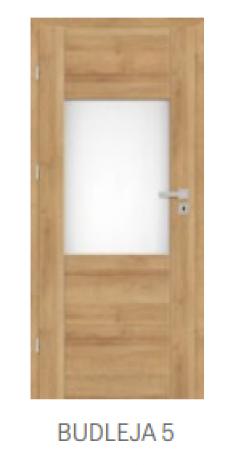 Drzwi BUDLEJA 5