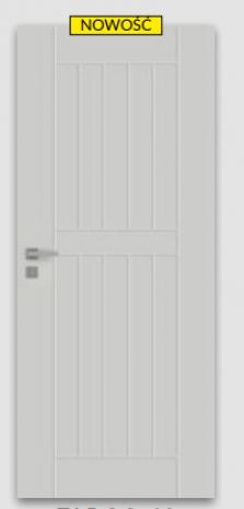 Drzwi Fargo 40