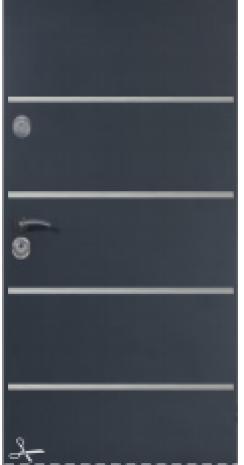 DRZWI DELTA SPECIAL 56S/56X/56R GŁADKIE Z APLIKACJAMI INOX 80N/90E