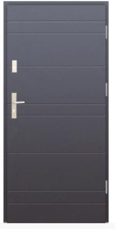 Drzwi Protect wzór 26e