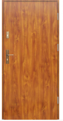 Drzwi Protect wzór 1