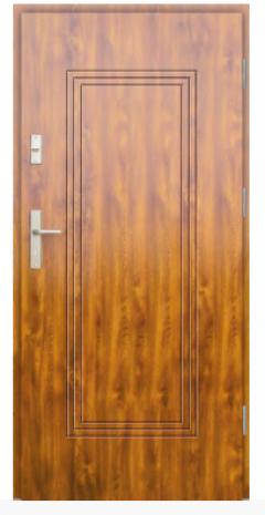 Drzwi Protect wzór 6