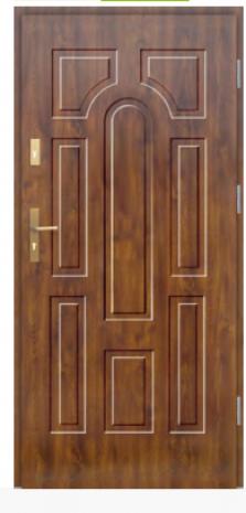 Drzwi Protect wzór 5