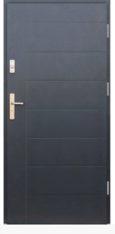 Drzwi Protect wzór 42