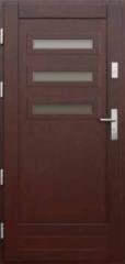 Drzwi Zewnętrzne P02